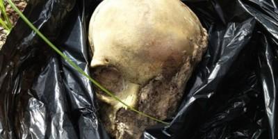 Ossada humana é encontrada em trilha próximo ao Posto Jamantão, em Vilhena