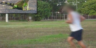 Durante teste físico, candidato a soldado da PM desmaia ao ver iguana e processa instituto que aplicou a prova, no Rio Grande do Norte