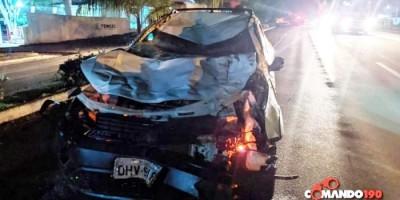 Motorista atropela dois cavalos que estavam soltos na BR-364,  em Ji-Paraná