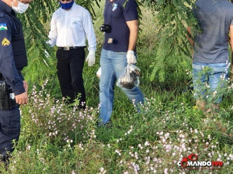 Urgente! Cabeça de homem é encontrada pendurada em árvore na zona rural de Ji-Paraná -VÍDEO