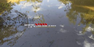 Caminhonete cai em rio após motorista perder o controle da direção, em Alta Floresta do Oeste
