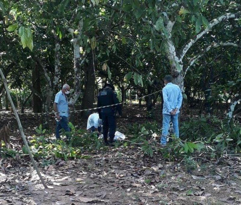 Idoso de 65 anos, morre ao cair de pé de cacau na zona rural de Gov. Jorge Teixeira