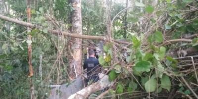 Motorista de caminhão morre após sofrer acidente na RO-481, em Nova Brasilândia