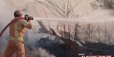 Incêndio em vegetação leva mais de uma hora para ser contido pelos Bombeiros Militares em Rolim de Moura