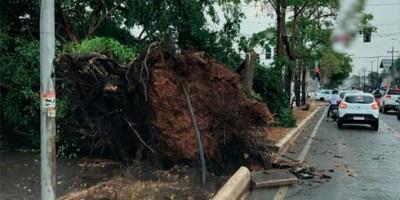 Frente fria provoca temporal e deixa rastro de destruição em Porto Velho