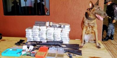 Canil do 2° BPM participa de apreensão de drogas e armas em apoio a Polícia Federal