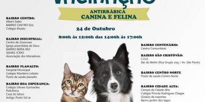 Rolim de Moura realizará Campanha de Vacinação Antirrábica para cães e gatos