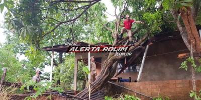 Vendaval e chuva de granizo causam estragos em Rolim de Moura; Corpo de Bombeiros foi acionado a atuar em diversas localidades