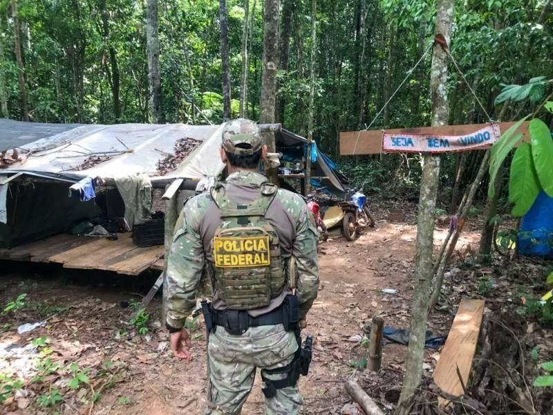 PF segue no combate a crimes ambientais em Rondônia e destrói serraria que funcionava dentro de terra indígena