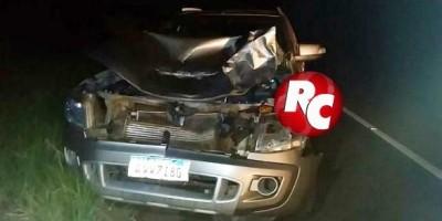 Vaca solta na pista provoca acidente na BR 429, em São Francisco do Guaporé
