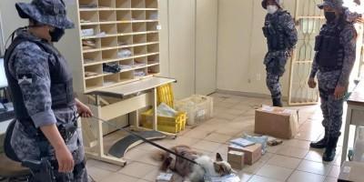 Drogas enviadas via Correios é apreendida pela Polícia Militar em Espigão do Oeste