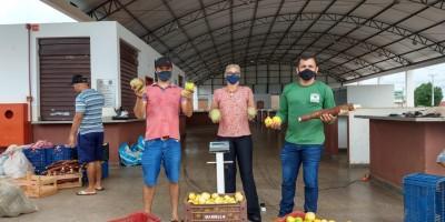 Prefeitura de Rolim de Moura entrega duas toneladas de alimentos do PAA
