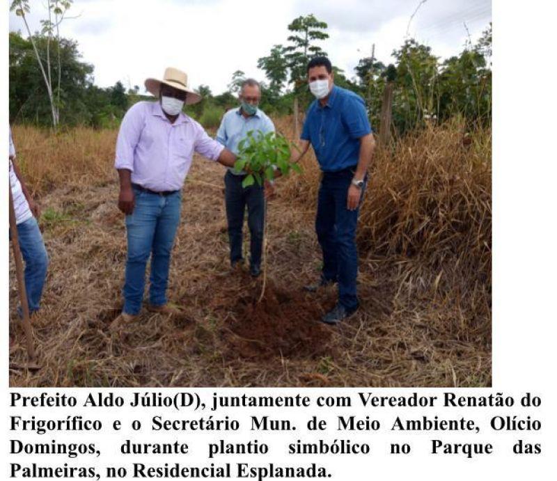 Secretaria de Meio Ambiente distribuiu mais de 500 mudas de arvores para agricultores em Rolim de Moura