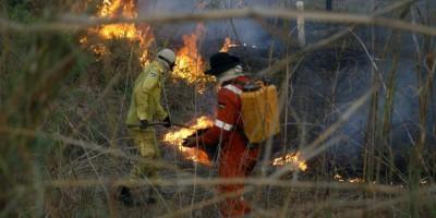 62 vagas destinadas a bombeiros civis voluntários para atuarem no combate aos incêndios florestais são abertas pelo Governo do Estado de Rondônia