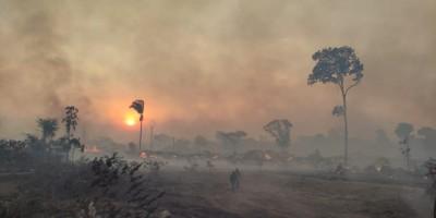 Mais de 400 alqueires foram atingidos por incêndio na zona rural de Rolim de Moura; vídeo de animais mortos pelo fogo não é da região