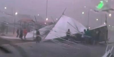 Vídeo: Temporal derruba árvores, poste e causa transtornos em Porto Velho