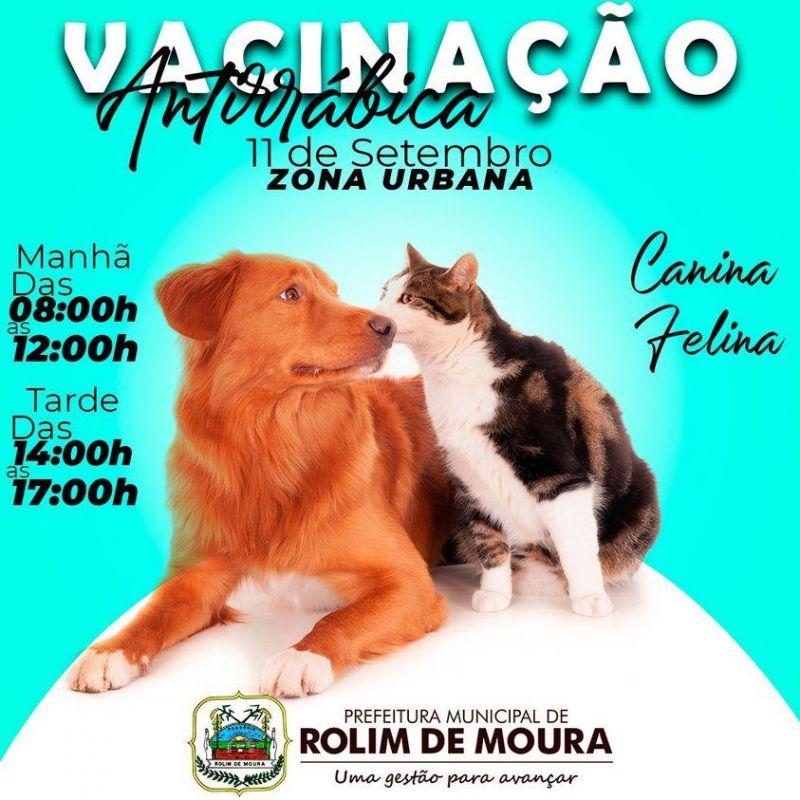 Vacinação antirrábica canina e felina será no próximo sábado na zona urbana de Rolim de Moura; Confira os locais